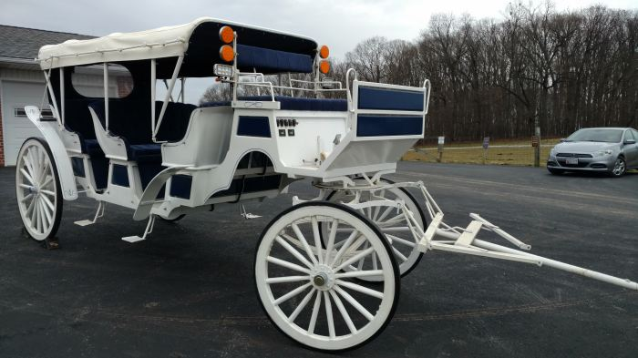2004 Roberts Limousine Carriage