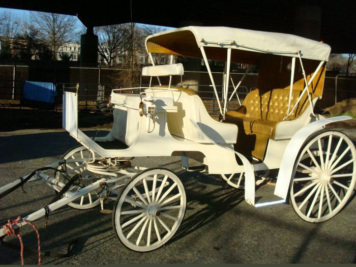 Vis-a-Vis FISHER Carriage (White & Gold)